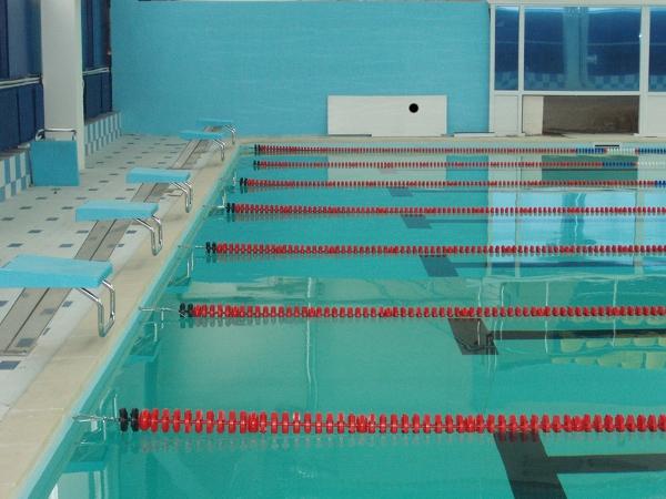 19 ноября состоялся выезд учеников 5-9 классов и учителей нашей школы в Шипицинский бассейн.  Это первый, но далеко...